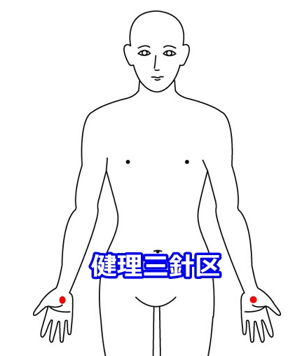 健理三針区
